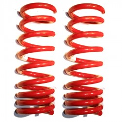 LX Rear 2981 Drop Springs