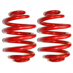 GTO Rear 3mm 2589 Drag Springs (Stock Height)