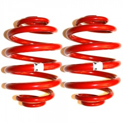 GTO Rear -20mm 2643 Drop Springs